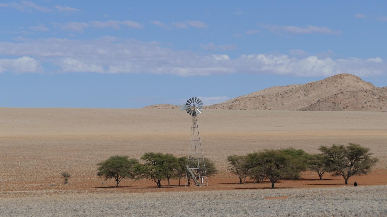 NAM_F_Namib_11
