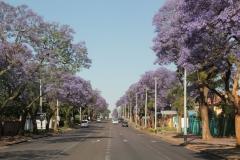 SA_A_Pretoria_2