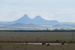 SA_I_Karoo